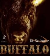 dr-neubauer-buffalo-600x600