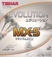 web_evolution_ELP