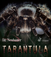 DrNeubauer TARANTULA